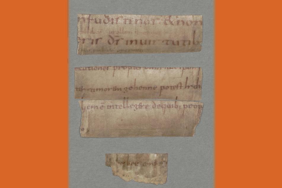 Fragment eines Salzburger Psalters aus dem 8. Jahrhundert. Foto: MGH/Ingo Seufert